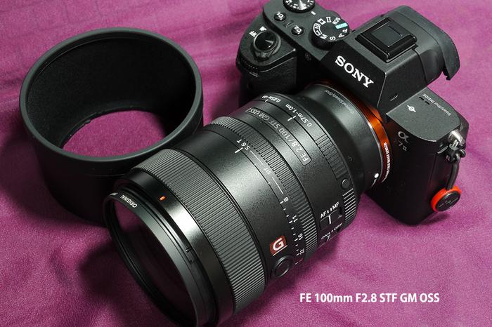 100 F28 STF_1.jpg