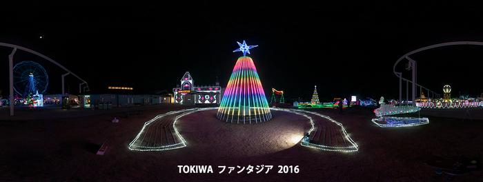 irumi_tokiwa_3.jpg