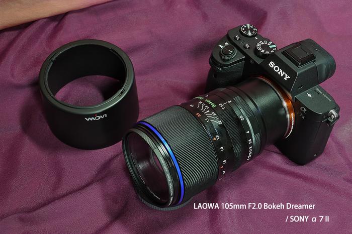 B_Dreamer 105mm 2.jpg